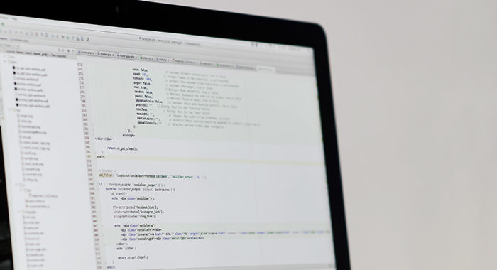 WordPress Programmierung
